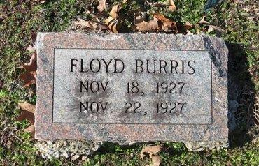 BURRIS, FLOYD - Hot Spring County, Arkansas | FLOYD BURRIS - Arkansas Gravestone Photos