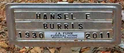 BURRIS, HANSEL E - Hot Spring County, Arkansas | HANSEL E BURRIS - Arkansas Gravestone Photos