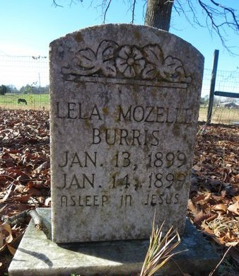 BURRIS, LELA MOZELLE - Hot Spring County, Arkansas | LELA MOZELLE BURRIS - Arkansas Gravestone Photos
