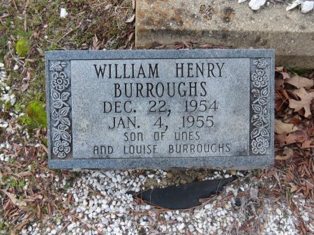 BURROUGHS, WILLIAM HENRY - Hot Spring County, Arkansas   WILLIAM HENRY BURROUGHS - Arkansas Gravestone Photos