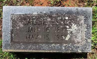 ESTEP, SALLIE - Hot Spring County, Arkansas   SALLIE ESTEP - Arkansas Gravestone Photos