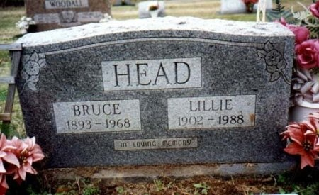 FINNEY HEAD, LILLIE - Hot Spring County, Arkansas | LILLIE FINNEY HEAD - Arkansas Gravestone Photos