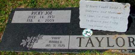 TAYLOR, RICKY JOE - Hot Spring County, Arkansas | RICKY JOE TAYLOR - Arkansas Gravestone Photos