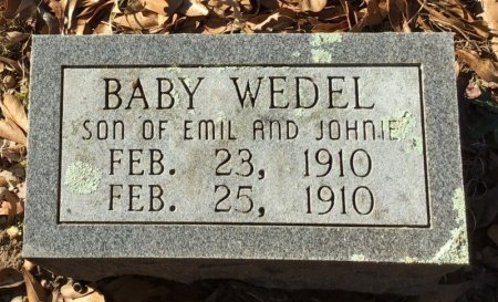 WEDEL, BABY - Hot Spring County, Arkansas | BABY WEDEL - Arkansas Gravestone Photos