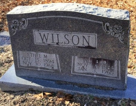 WILSON, ETHEL M. - Hot Spring County, Arkansas | ETHEL M. WILSON - Arkansas Gravestone Photos