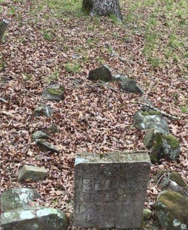 PHILLIPS, CARL - Howard County, Arkansas | CARL PHILLIPS - Arkansas Gravestone Photos