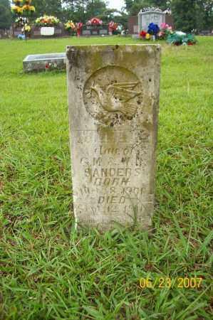 SANDERS, WILLIE F - Howard County, Arkansas   WILLIE F SANDERS - Arkansas Gravestone Photos