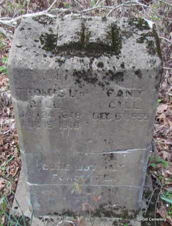 SHADDEN GILL, FANY (FRANCES ADE) - Independence County, Arkansas | FANY (FRANCES ADE) SHADDEN GILL - Arkansas Gravestone Photos