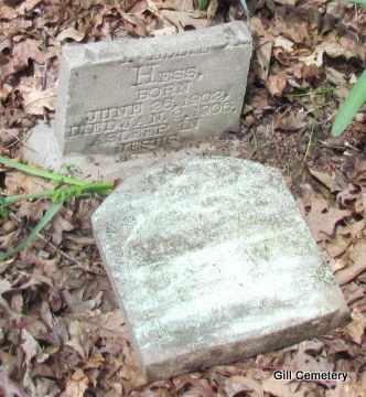 HESS, JOHN W - Independence County, Arkansas | JOHN W HESS - Arkansas Gravestone Photos