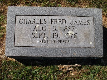 JAMES, CHARLES FRED - Independence County, Arkansas | CHARLES FRED JAMES - Arkansas Gravestone Photos