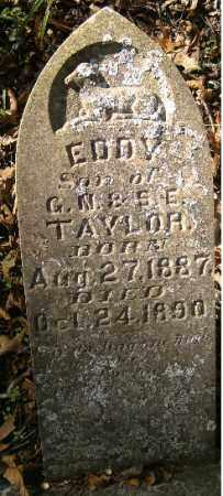 TAYLOR, EDDY - Independence County, Arkansas | EDDY TAYLOR - Arkansas Gravestone Photos
