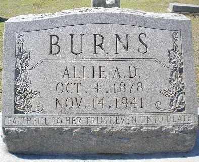 BURNS, JULIA ALLIE ALMA DELL - Izard County, Arkansas | JULIA ALLIE ALMA DELL BURNS - Arkansas Gravestone Photos