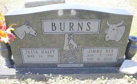 BURNS, JIMMY REX - Izard County, Arkansas | JIMMY REX BURNS - Arkansas Gravestone Photos