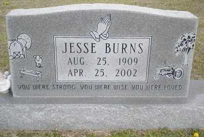 BURNS, PLEASANT JESSIE - Izard County, Arkansas | PLEASANT JESSIE BURNS - Arkansas Gravestone Photos