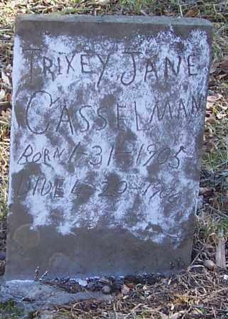 CASSELMAN, TRIXEY JANE - Izard County, Arkansas | TRIXEY JANE CASSELMAN - Arkansas Gravestone Photos