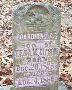 GIPSON, JAHOIDA C. - Izard County, Arkansas | JAHOIDA C. GIPSON - Arkansas Gravestone Photos