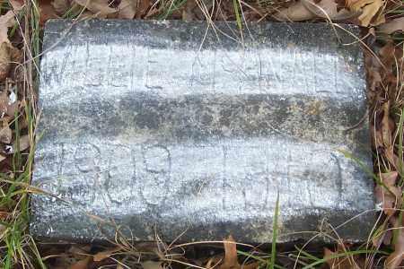 MCANALLY, WILLIE - Izard County, Arkansas | WILLIE MCANALLY - Arkansas Gravestone Photos