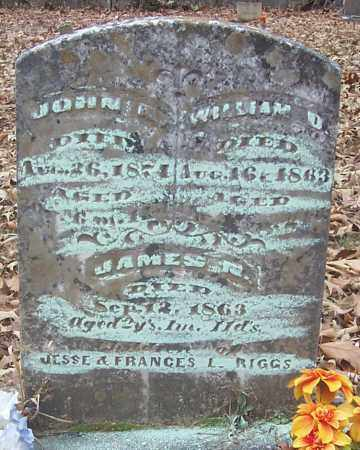RIGGS, WILLIAM D. - Izard County, Arkansas | WILLIAM D. RIGGS - Arkansas Gravestone Photos