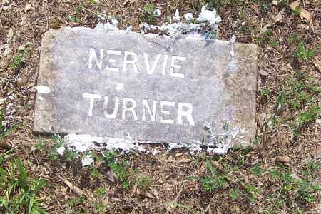 TURNER, NERVIE - Izard County, Arkansas | NERVIE TURNER - Arkansas Gravestone Photos