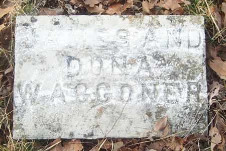 YOUNG WAGGONER, DONA M. - Izard County, Arkansas | DONA M. YOUNG WAGGONER - Arkansas Gravestone Photos