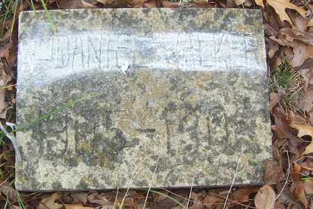 WALKER, WILLIAM DANIEL - Izard County, Arkansas | WILLIAM DANIEL WALKER - Arkansas Gravestone Photos