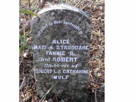 WOLF, ALICE - Izard County, Arkansas   ALICE WOLF - Arkansas Gravestone Photos