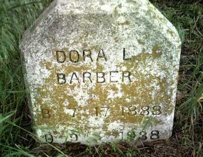 BARBER, DORA L - Jackson County, Arkansas | DORA L BARBER - Arkansas Gravestone Photos