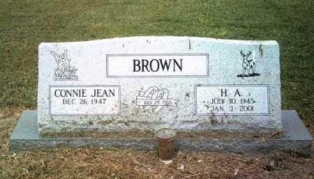 BROWN, H A - Jackson County, Arkansas | H A BROWN - Arkansas Gravestone Photos