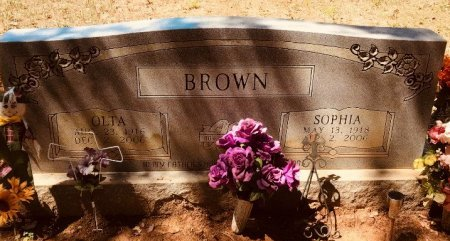 BROWN, SOPHIA - Jackson County, Arkansas | SOPHIA BROWN - Arkansas Gravestone Photos
