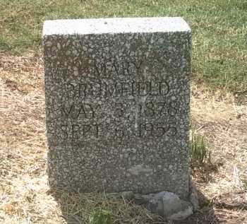 BRUMFIELD, MARY - Jackson County, Arkansas | MARY BRUMFIELD - Arkansas Gravestone Photos