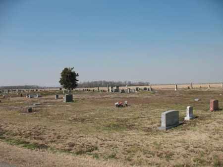 *OVERVIEW,  - Jackson County, Arkansas |  *OVERVIEW - Arkansas Gravestone Photos