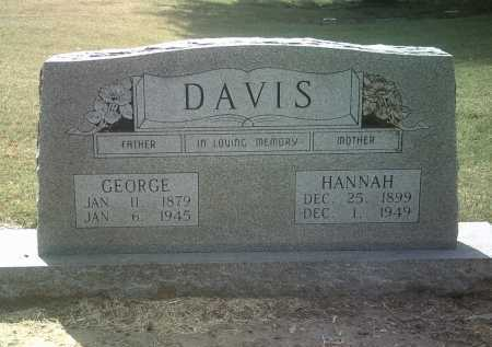 DAVIS, GEORGE - Jackson County, Arkansas | GEORGE DAVIS - Arkansas Gravestone Photos