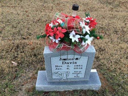 DAVIS, JAMES A. - Jackson County, Arkansas | JAMES A. DAVIS - Arkansas Gravestone Photos