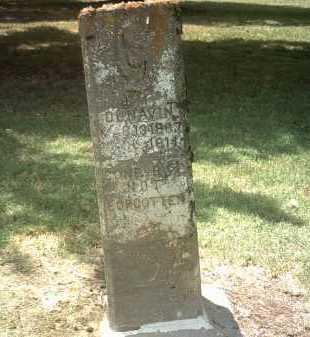 DUNAVIN, J M - Jackson County, Arkansas | J M DUNAVIN - Arkansas Gravestone Photos
