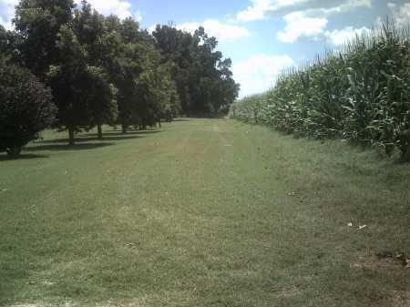 *ENTRANCE,  - Jackson County, Arkansas |  *ENTRANCE - Arkansas Gravestone Photos