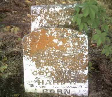 HARDY, SALLY N - Jackson County, Arkansas | SALLY N HARDY - Arkansas Gravestone Photos
