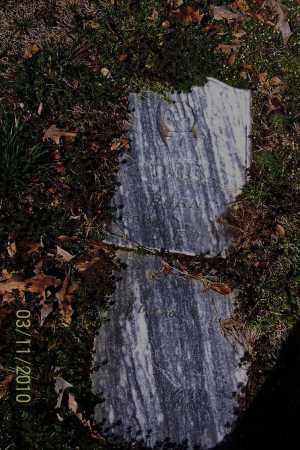 HOLT, E D - Jackson County, Arkansas | E D HOLT - Arkansas Gravestone Photos
