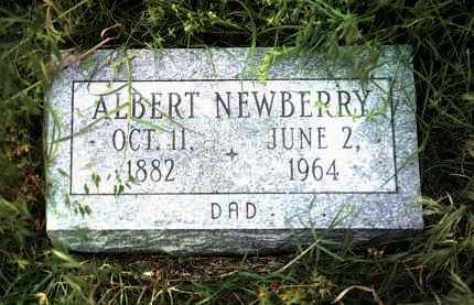 NEWBERRY, ALBERT - Jackson County, Arkansas | ALBERT NEWBERRY - Arkansas Gravestone Photos