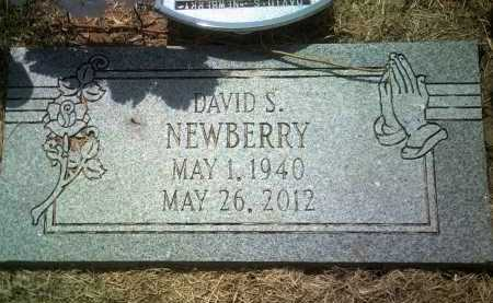 NEWBERRY, DAVID S - Jackson County, Arkansas | DAVID S NEWBERRY - Arkansas Gravestone Photos