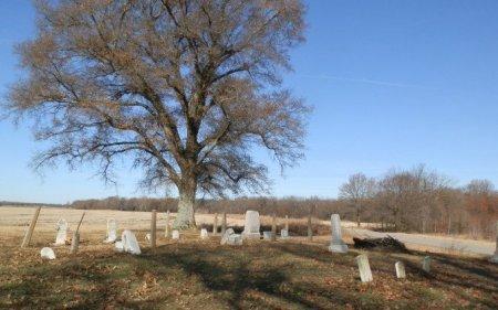 *OVERVIEW, BURTON CEMETERY - Jackson County, Arkansas | BURTON CEMETERY *OVERVIEW - Arkansas Gravestone Photos