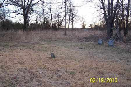*OVERVIEW (WEST SIDE),  - Jackson County, Arkansas |  *OVERVIEW (WEST SIDE) - Arkansas Gravestone Photos
