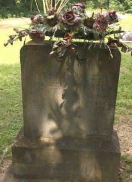 PIERCE, ANNIE - Jackson County, Arkansas | ANNIE PIERCE - Arkansas Gravestone Photos