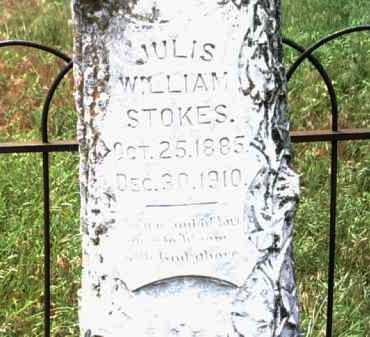 STOKES, JULIS WILLIAM - Jackson County, Arkansas | JULIS WILLIAM STOKES - Arkansas Gravestone Photos