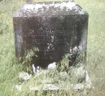 STRIDER, VAUGHN - Jackson County, Arkansas | VAUGHN STRIDER - Arkansas Gravestone Photos