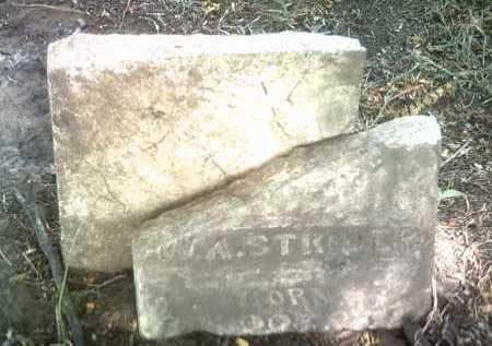 STRIDER, W A - Jackson County, Arkansas   W A STRIDER - Arkansas Gravestone Photos