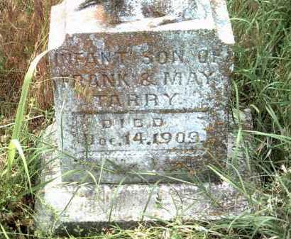 TARRY, INFANT SON - Jackson County, Arkansas | INFANT SON TARRY - Arkansas Gravestone Photos