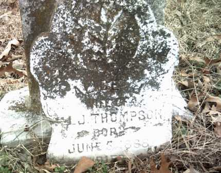 THOMPSON, ALICE J - Jackson County, Arkansas | ALICE J THOMPSON - Arkansas Gravestone Photos