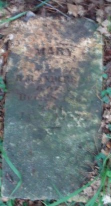 ANDERSON, MARY - Jefferson County, Arkansas | MARY ANDERSON - Arkansas Gravestone Photos