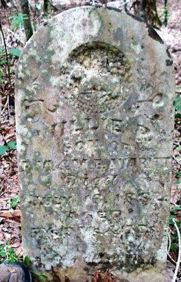 AVARITT, WILLIE P - Jefferson County, Arkansas | WILLIE P AVARITT - Arkansas Gravestone Photos
