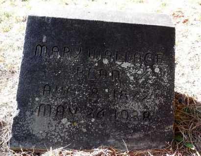BEAN, MARY - Jefferson County, Arkansas | MARY BEAN - Arkansas Gravestone Photos